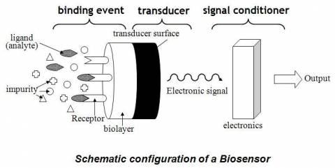 research researchinmelab biosensor  Medical Electronics